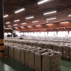 【大分県椎茸農業協同組合(OSK)入札】9月7日参加しました